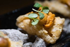 Chilean Uni with Chicharrones and Charred Lime