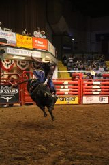 Rodeo i Fort Worth