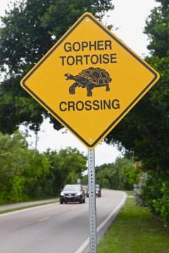 Kör försiktigt