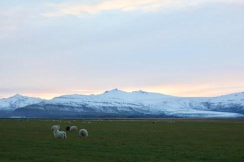 Solen börjar gå ner över södra Island