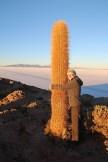 Dans la vie, il y a des cactus, moi je me pique de le savoir