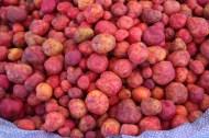 Des pommes de terre étonnantes
