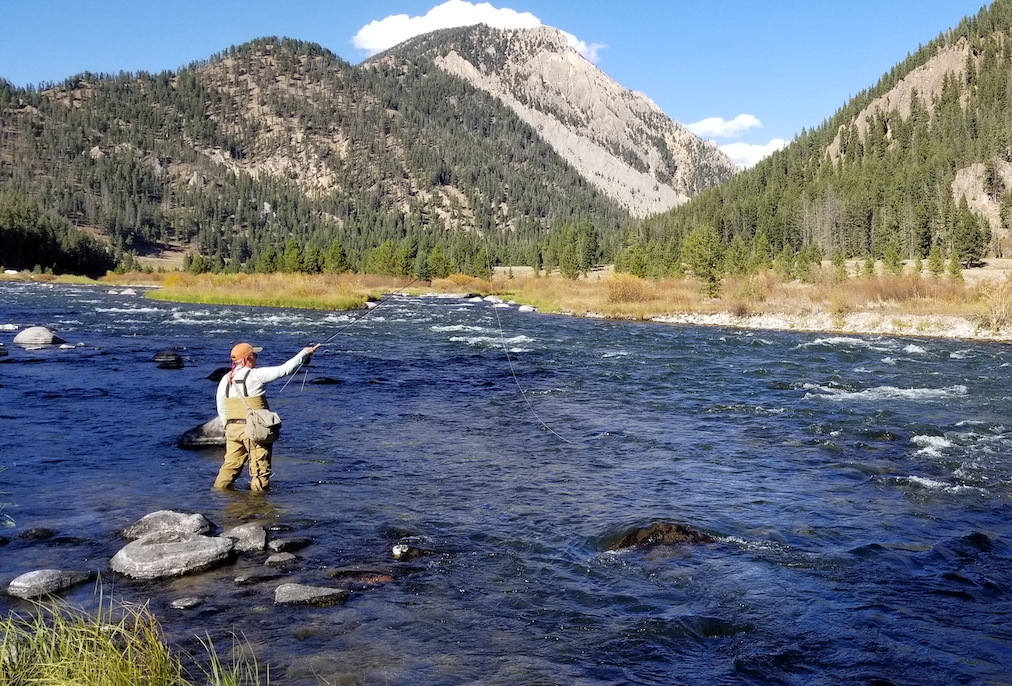 fall fly fishing tactics