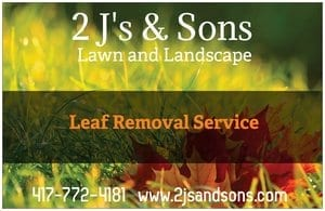 lawn care leaf removal service