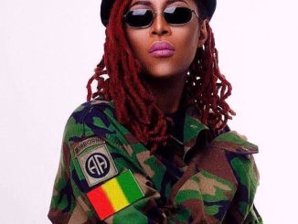 Download Porshe Panamera by Cynthia Morgan