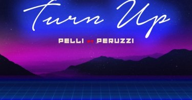 Pelli ft. Peruzzi - Turn Up (prod. Dr. Syk)
