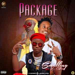 Download smalling package