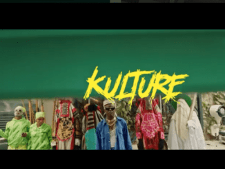 Zoro Kulture Video Download