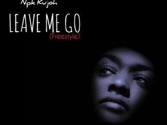NPK Kujoh Leave Me Go Mp3 Download