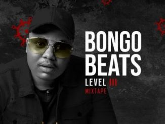 Bongo Beats Level 3 Mp3 Download