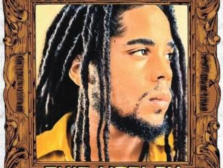 Skip Marley No Love Mp3 Download