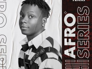 Terri Afro Series EP Download