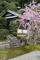 2langnasen_osaka_kyoto-21