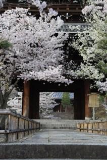 2langnasen_osaka_kyoto-32