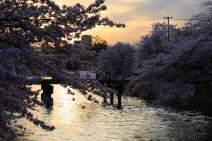 2langnasen_osaka_kyoto-34