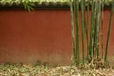 2langnasen_chengdu_2003