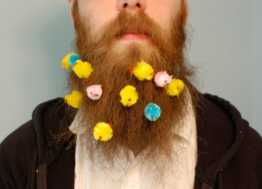 chicks in beard
