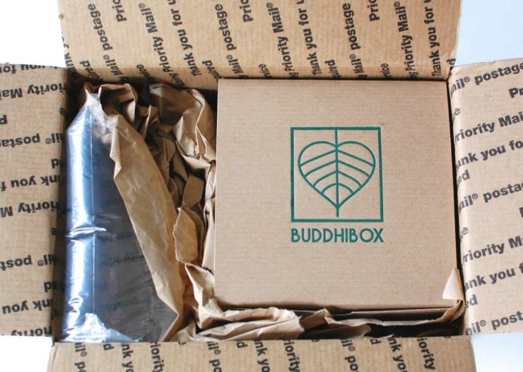 Buddhibox November 2014 Review