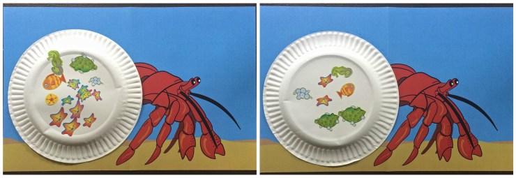 decorated hermit crabs
