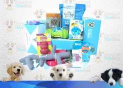 Doggy Mailbox