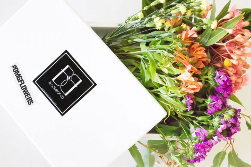 Bloombox Co