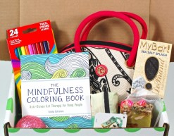 Subscription Box List And Directory 2 Little Rosebuds