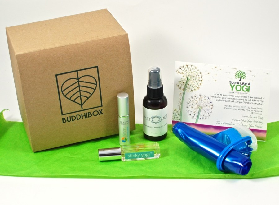 November 2015 Buddhibox