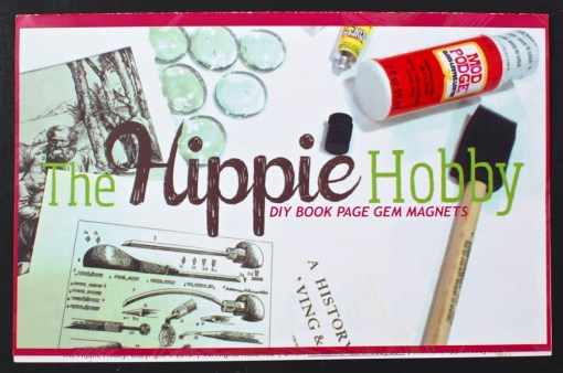 Hippie Hobby review