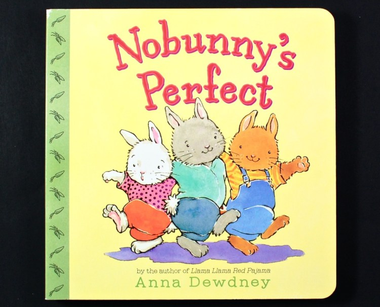 Nobunny's Perfect book