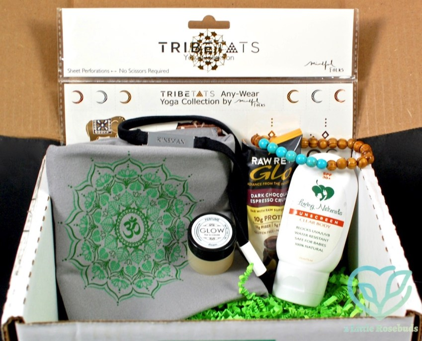 June 2016 Buddhibox review