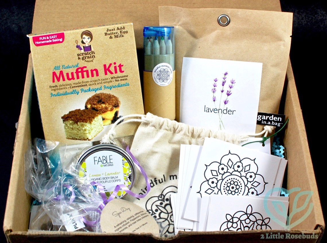Caring Crate June 2016 Subscription Box Review 2 Little