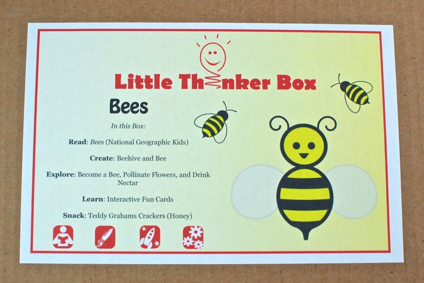 Little Thinker Box bees