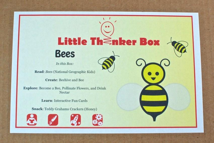 Little Thinker Box bees