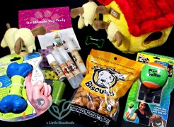 September 2016 Surprise Pawty review
