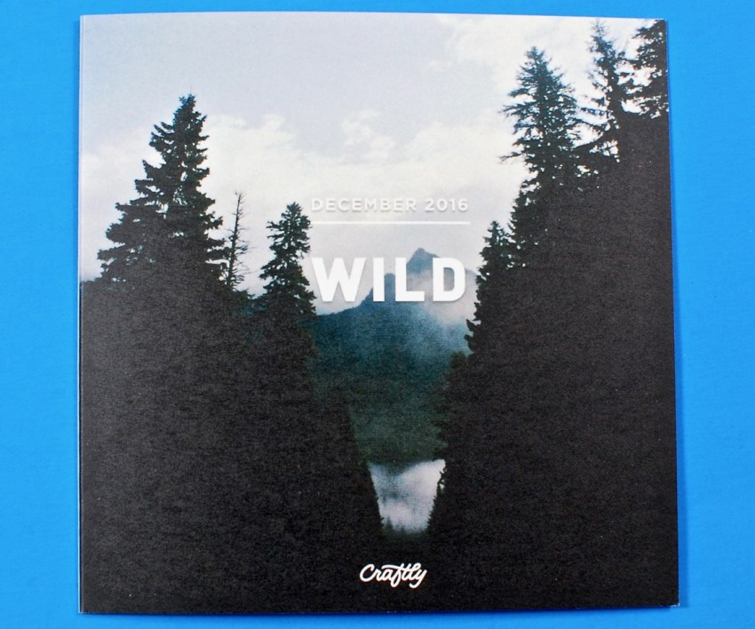 Craftly Wild box review