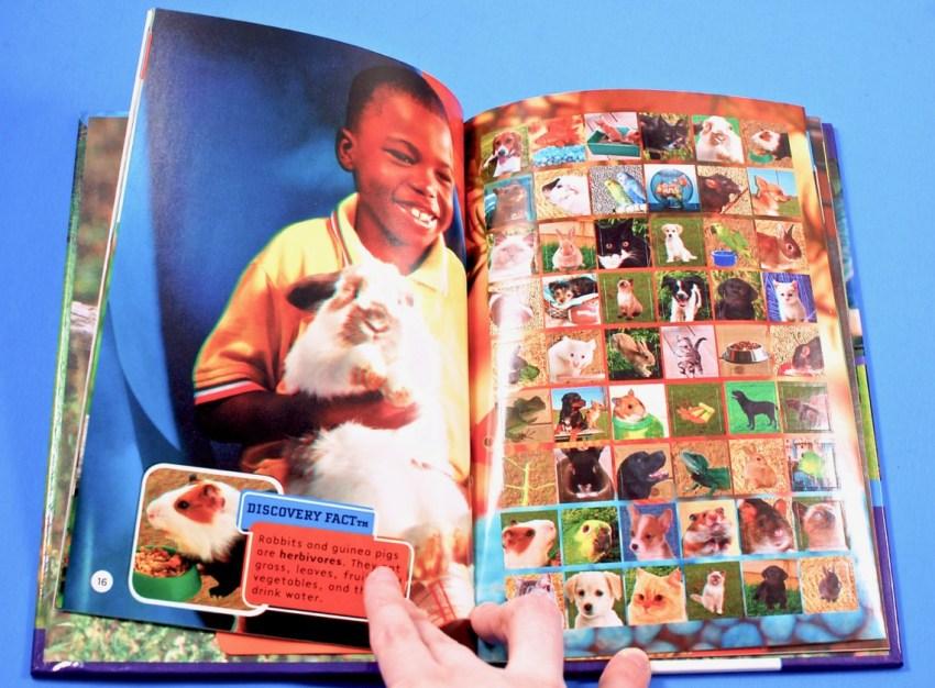 3d pets book