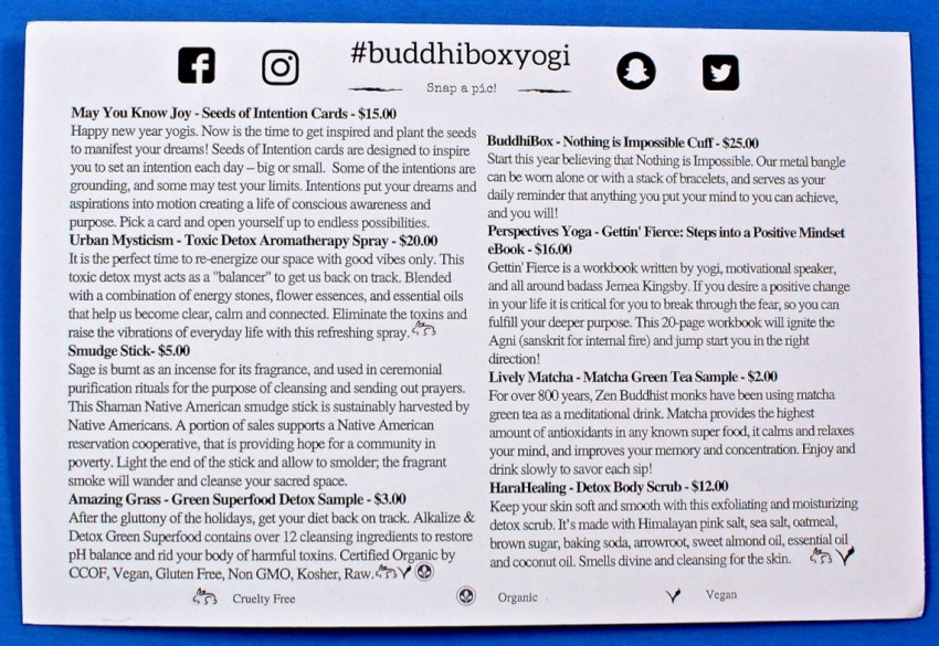 Buddhi Box review