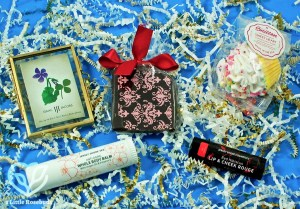 Mommy Mailbox February 2017 Subscription Box Review & Coupon Code