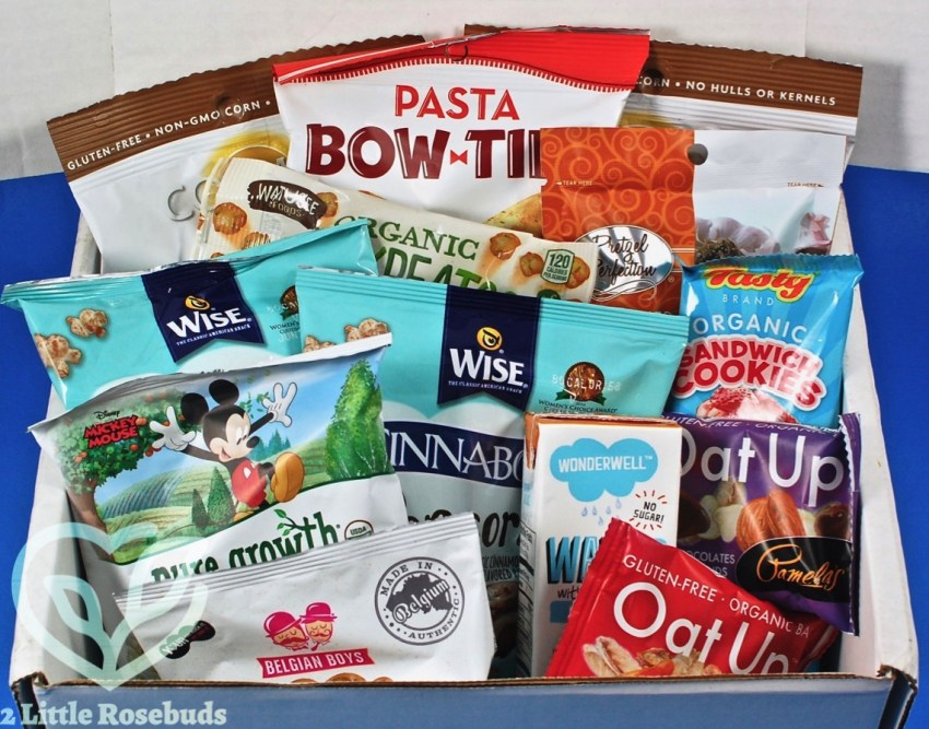SnackSack April 2017 Subscription Box Review & Coupon Code