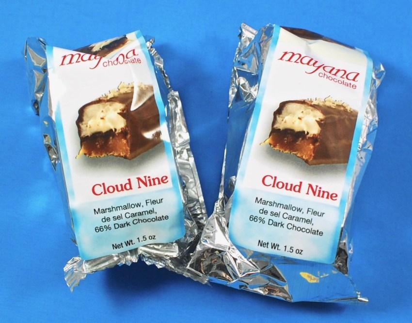Cloud nine shuttle coupon code