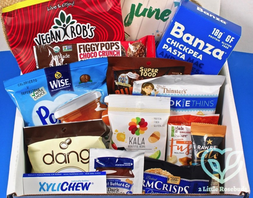 SnackSack June 2017 Subscription Box Review & Coupon Code