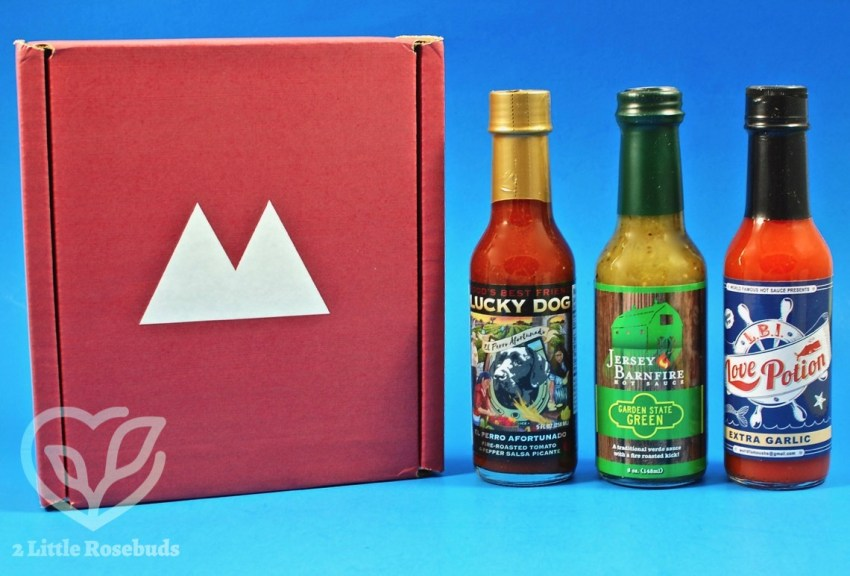 Fuego Box July 2017 Hot Sauce Subscription Box Review & $10 Coupon