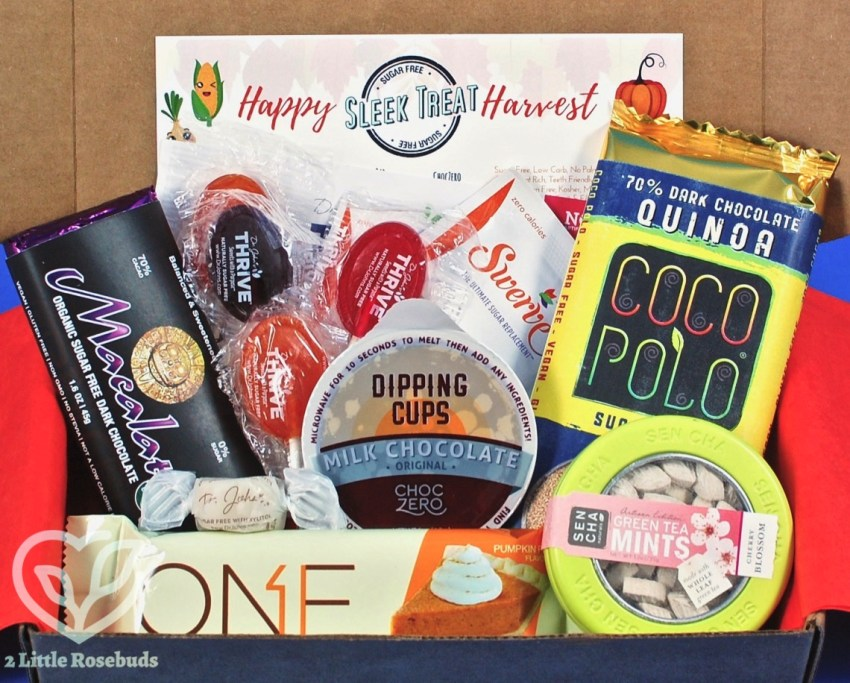 Sleek Treat November 2017 Subscription Box Review & Coupon Code