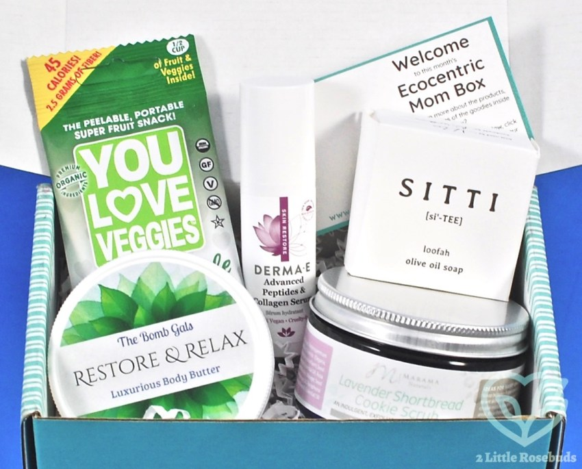 Ecocentric Mom August 2018 Box Review & Coupon Code