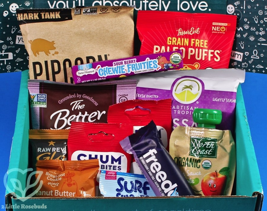 June 2019 SnackSack review