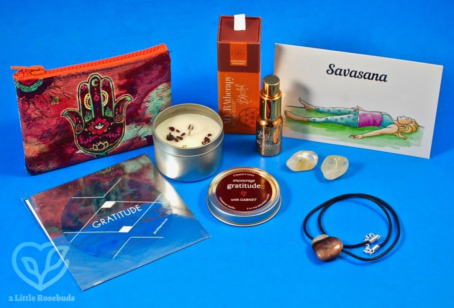 November 2019 BuddhiBox review