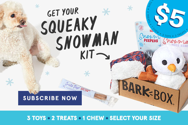 barkbox coupon 2020
