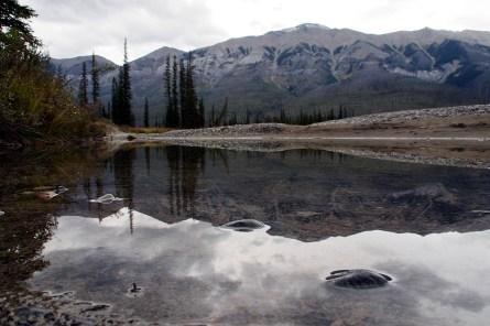Kootenay River reflection.