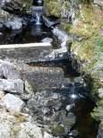Fish Ladder at Rogie Falls