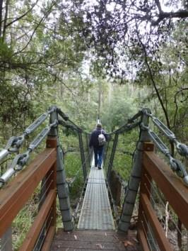 Alex crossing a suspension bridge.